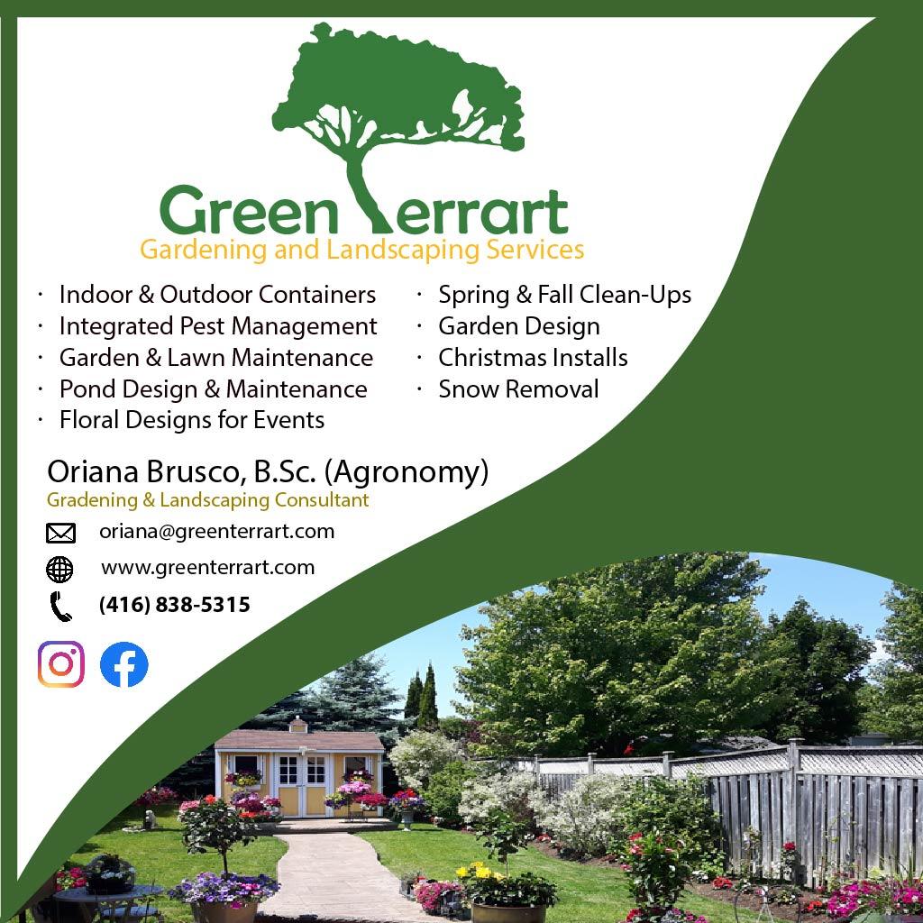 Green Terrart
